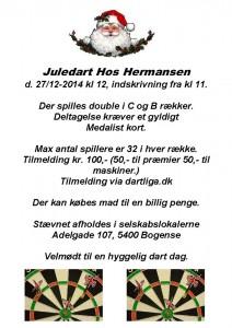 Juledart_Hermansen